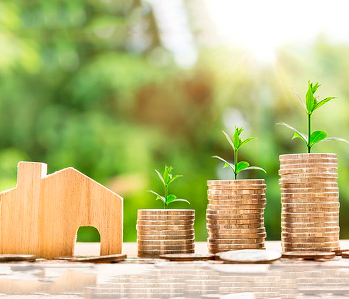 DIFFÉRENTS TYPES D'INVESTISSEMENT (PINEL, SCPI…)